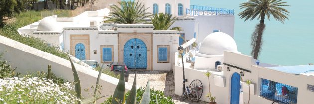 La capitale tunisienne Tunis
