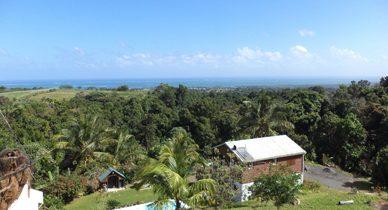 Les différentes raisons de choisir Guadeloupe comme destination de vacances