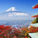 Créer un voyage culinaire en visitant un restaurant japonais à la française