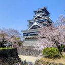 Quelques conseils pour bien profiter d'un séjour au Japon