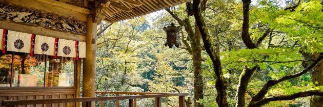 Quelques îles du Japon à découvrir le temps d'un voyage