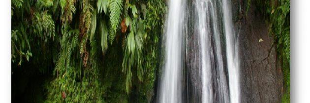 Cap sur l'archipel Guadeloupe, petit Paradis de la Caraïbe, et de Tenerife, l'île de l'éternel printemps