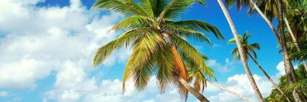 L'île de la Guadeloupe, une certaine idée du paradis sur Terre