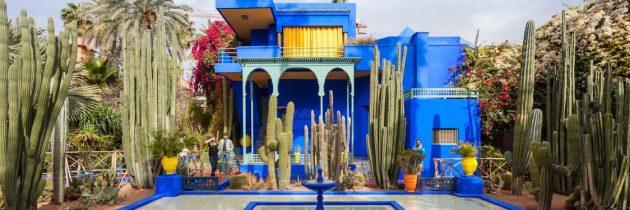 Le jardin Majorelle : une parenthèse paisible au cœur de Marrakech