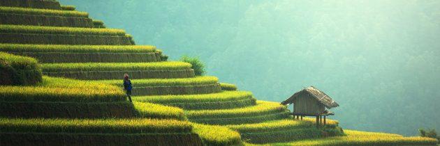 Des paysages exceptionnels à voir en Asie
