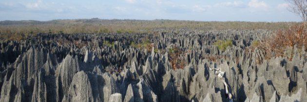 Liste des parcs nationaux à découvrir lors d'un séjour à Madagascar