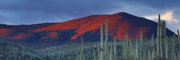 Astuces pour bien organiser son séjour au Mexique