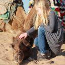 Découvrez les merveilles Kasbah marocaine