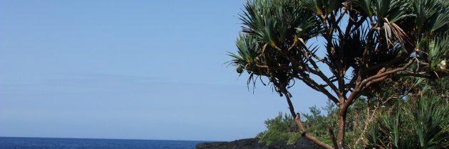 Partir à La Réunion pour les vacances 2018 !