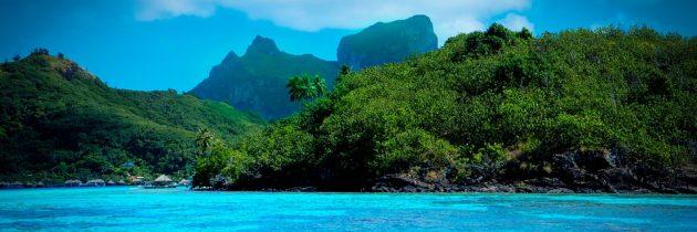 Découvrir la pêche en mer en Polynésie française