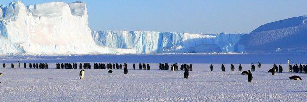 Croisière spéciale expédition dans l'Antarctique