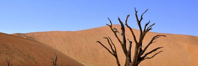 Bien planifier son voyage pour la Namibie