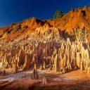 Voyager à Madagascar et découvrir ses particularités